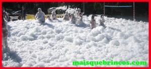 Fiesta espuma Pontevedra